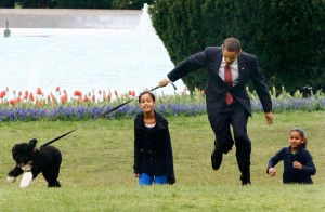 President Obama playing with daughters and new dog Bo