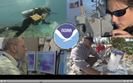 Graohic of NOAA services from Explore NOAA movie on Government Book Talk by GPO