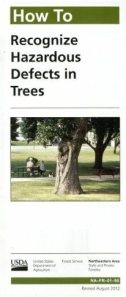 How-to-Recognize-Defects-in-Trees