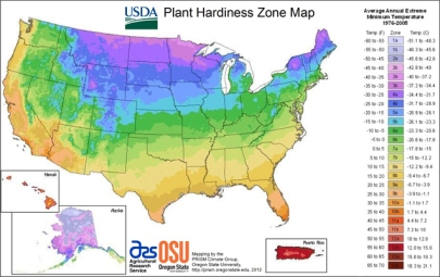 USDA-Plant-Hardiness-Zones-Map across the U.S.