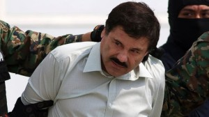 Copyright free photo of El Chapo