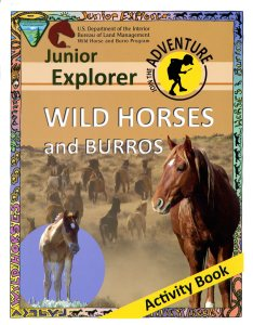 024-011-00200-6_junior-explorer-wild-horses028