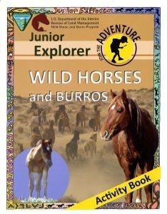 024-011-00200-6_junior-explorer-wild-horses028